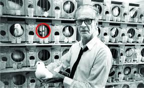 Aparición del espiritu de Watson en una jaula de paloma del laboratorio de Skinner